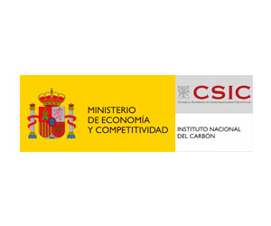 Instituto Nacional del Carbón